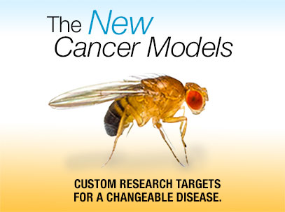 The New Cancer Models edited
